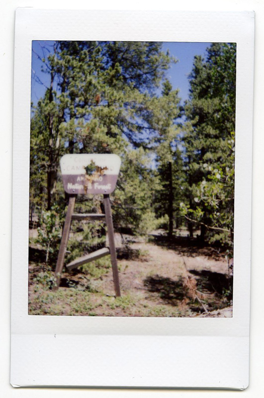 camping polaroid 10